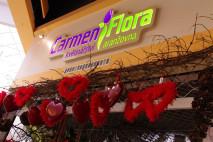 Carmen flora 1